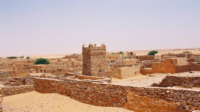 الشيخ محمذن بن المختار متالي